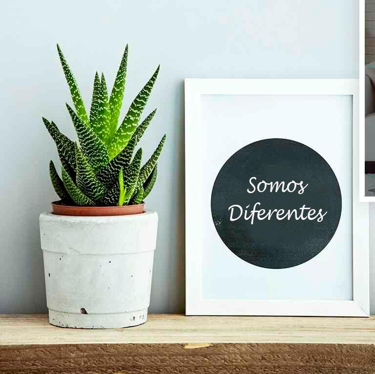 https://infiniteroles.com/wp-content/uploads/2018/09/somos-diferentes.png